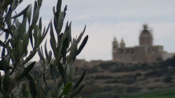 ERA objects to proposed Zebbug development in Gozo