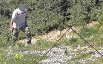 Gang of 5 Turtle Dove trappers filmed by CABS in Mellieha