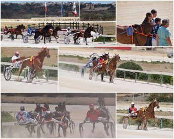 Finals of the Bailey's races with the Gozo Horse Racing Association