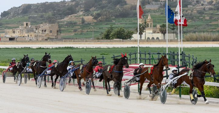 Gozo Horse Racing Association Pre-Season Race at Xhajma