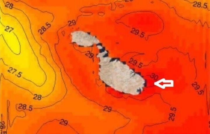 Sea temperature soars beyond 30 oC around the Maltese islands