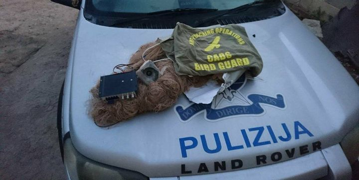 Wader trapper caught by Police, Honey Buzzard shot down - CABS