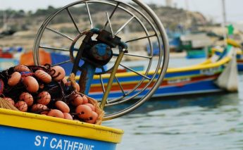 Short course open to the public on Fisheries and Aquaculture