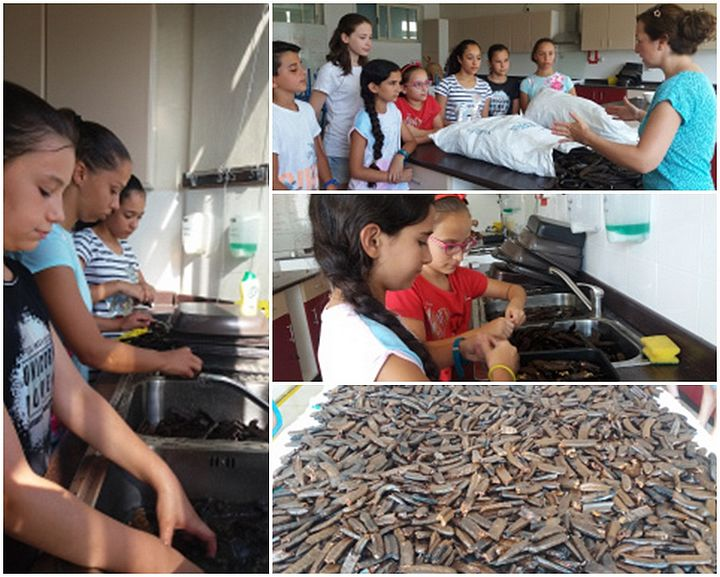 Gozo College Middle School students promote the use of local resources