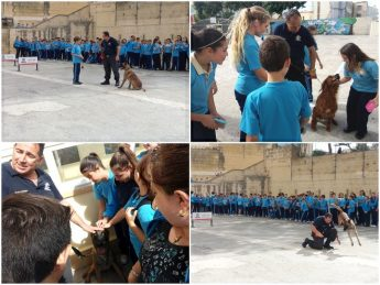 K-9 Police Section visits students at Gozo College Middle School