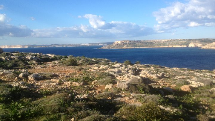 Update: PD tables motion against extended hunting hours at Majjistral Park