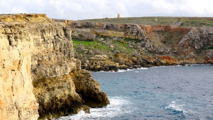 Back to the status quo on environment, says BirdLife Malta