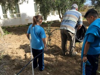 Gozo College San Lawrenz Primary completes tree planting project