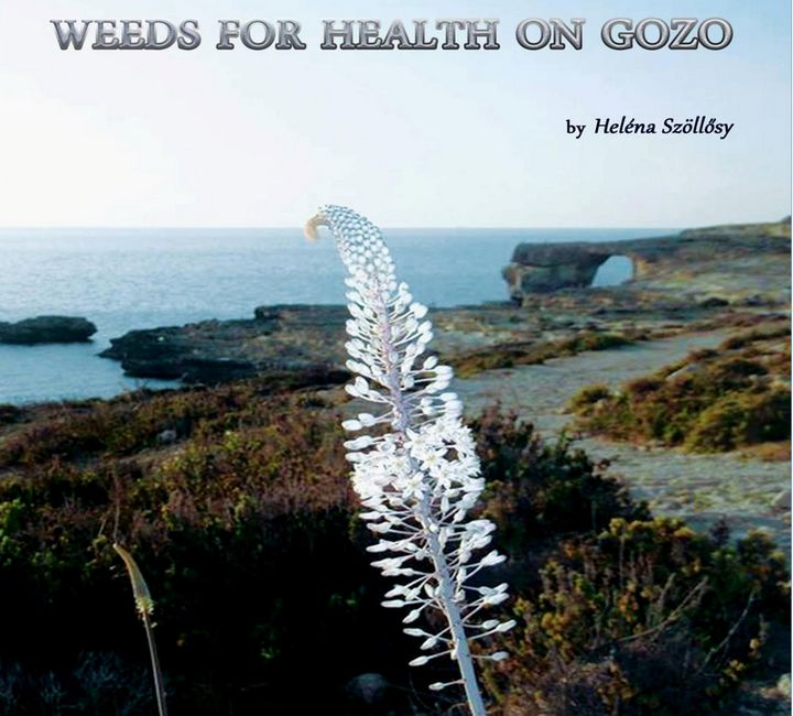 Heléna Szöllosy, Weeds for Health on Gozo - Book review