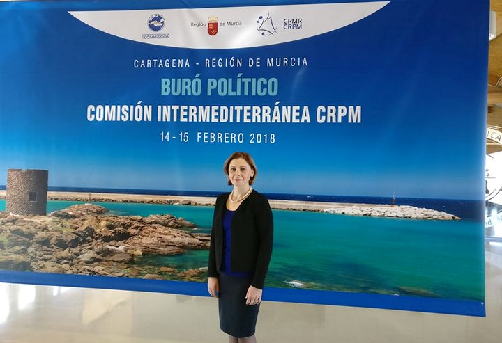 Minister for Gozo participates in meeting of the CPMR in Spain