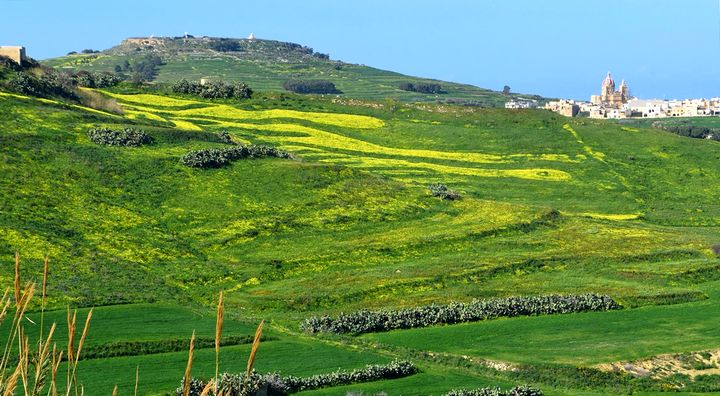 Information document launched by the ERA on green infrastructure in Malta