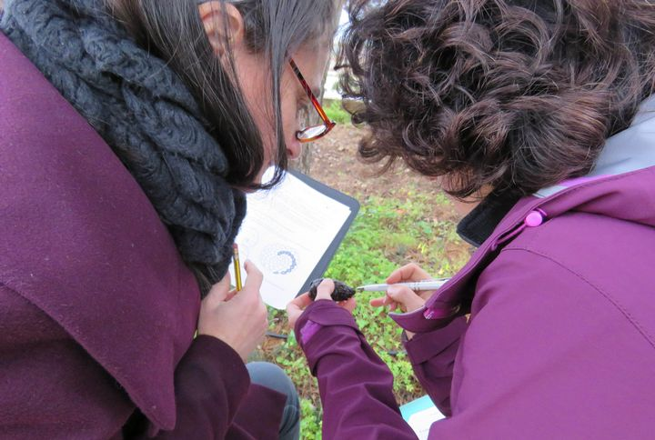 New environmental teaching course for primary school teachers