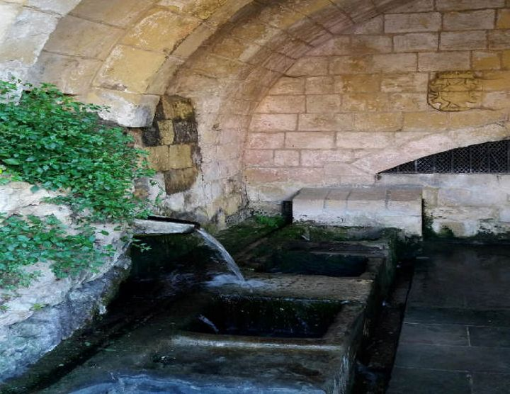 Precious Water: The underground water and springs at Fontana
