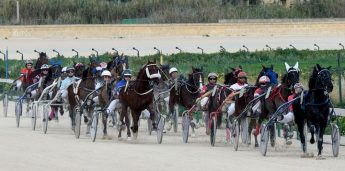 Gozo Horse Racing Association meeting in aid of Arka Foundation