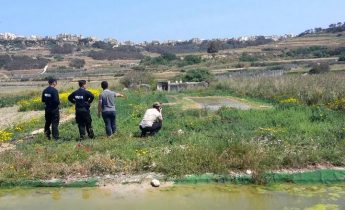 Gozo joint operation sees 19 illegal bird trapping installations dismantled