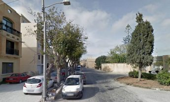 "NTM concerned over ""massacres of trees"" in urban areas including Gozo"