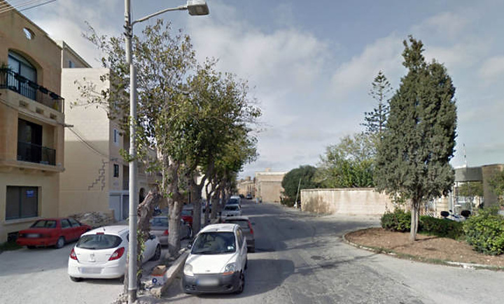 """NTM concerned over """"massacres of trees"""" in urban areas including Gozo"""