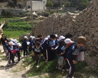 6,000 children in Gozo and Malta experience nature at first hand
