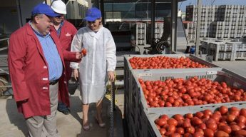 Gozo Minister visits Magro Brothers tomato processing plant