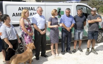 Pet Friendly Holiday - Free water for pets on Gozo Channel
