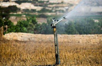 Farmers - Produce - Water: By Lino DeBono