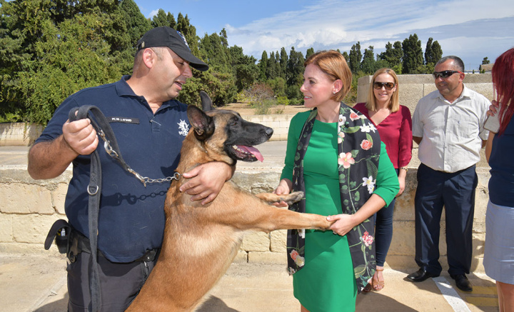 New outside facilities for dogs opened at Animal Welfare Gozo