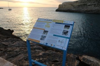 Xlendi sign to raise awareness on effect of light pollution on seabirds