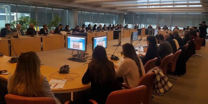 Gozo Business Chamber attends INSULEUR public hearing in Brussels