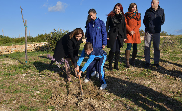 Nadur's Sopu Garden inaugurated and 'Adopt a Tree' scheme launched
