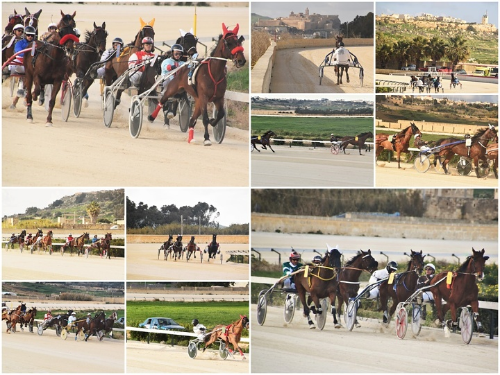 Gozo Horse Racing Association Winter Races held on Saturday