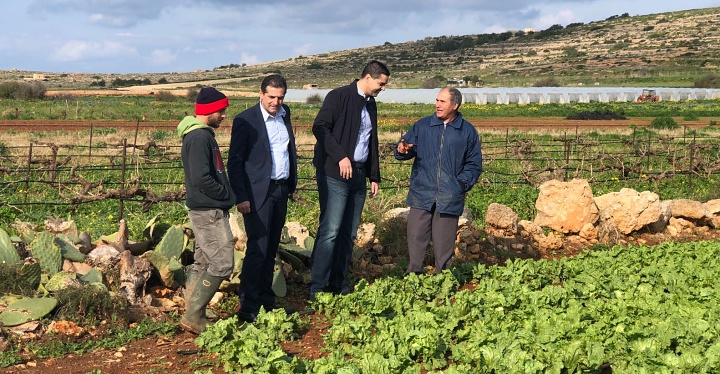 Agricultural land is essential for the Maltese and Gozitan farmer - Government