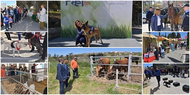 Pet Fun Day at Animal Welfare Gozo hailed as a great success