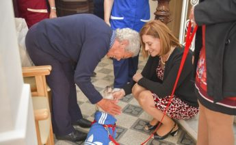 More beds for the elderly and pet therapy now available in Gozo