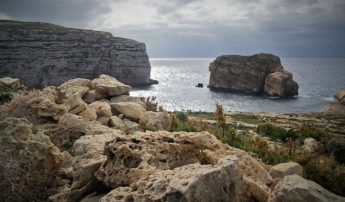 A Night with the Scopoli's in Gozo with BirdLife Malta at Dwejra