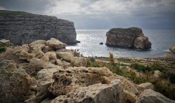 A Night with the Scopoli's in Gozo with BirdLife Malta at Dwejra
