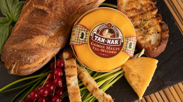 New semi-hard artisan cheese launched in Gozo - Gobon Malti tal-Milord