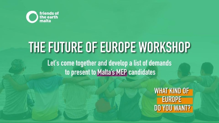 The future we want - FoE workshop on MEP elections